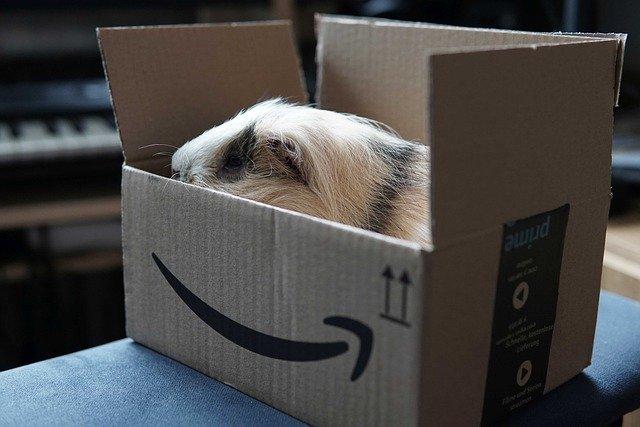 Untertitel Amazon Prime